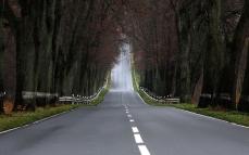 road_asphalt_marking_faltering_landscape_descent_lifting_52137_1920x1200