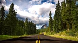 road_asphalt_marking_lines_trees_fur-trees_8218_1920x1080