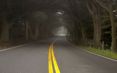road_marking_double_continuous_points_yellow_asphalt_53153_1920x1200