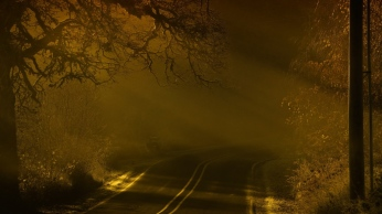 road_night_fog_marking_92718_1366x768