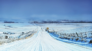 road_sign_snow_winter_protections_stakes_field_48324_1920x1080
