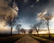 road_trees_fields_clouds_sky_6347_1280x1024