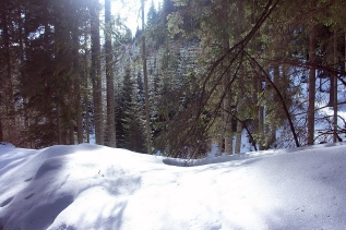 romania_snow_mountains_snowdrifts_trees_winter_60917_1800x1199