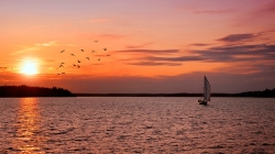 sailing_vessel_decline_sea_birds_surface_of_the_water_ripples_lilac_silence_tranquillity_sun_61621_1920x1080