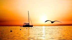 sailing_vessel_fishing_bird_flight_evening_sea_outlines_anchor_buoys_48344_1920x1080