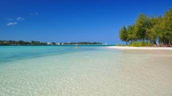 sea_beach_trees_90799_1366x768