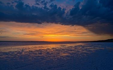 sea_grass_sunset_84662_2560x1600