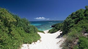 sea_sand_beach_grass_92229_1366x768