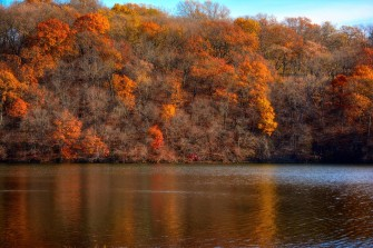 slope_forest_lake_trees_105917_2048x1365