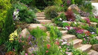 steps_flowers_garden_vegetation_green_summer_allsorts_60603_1366x768 (1)