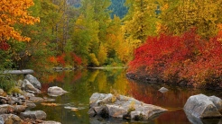 stones_autumn_river_forest_beaches_paint_october_48009_1366x768
