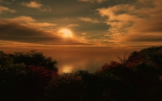 sun_coast_bushes_evening_clouds_sea_6447_1920x1200