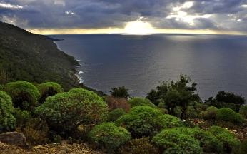 sunset_sea_beach_landscape_81065_1920x1200