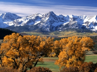 trees_autumn_crones_yellow_mountains_tops_colorado_7144_1600x1200