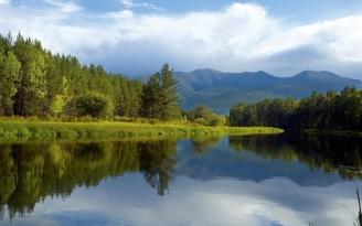 trees_coast_lake_siberia_wood_reflection_7105_1680x1050