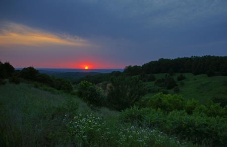 trees_grass_flowers_sun_sunset_92929_2048x1325