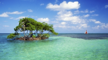 trees_island_sailing_vessel_bank_azure_horizon_60883_1920x1080
