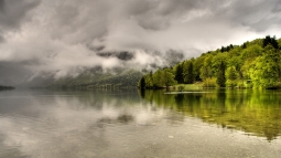 trees_lake_coast_clouds_haze_cloudy_55384_1920x1080