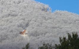 trees_winter_snow_house_light_30527_1920x1200