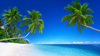 tropical_beach_paradise_5k-2560x1440