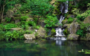waterfall_river_grass_herbs_87676_2560x1600