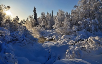winter_river_steam_trees_snow_99376_1920x1200