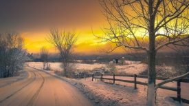 winter_road_trees_sunset_101328_1366x768
