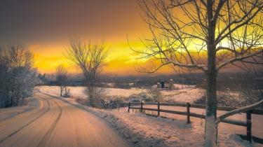 winter_road_trees_sunset_101328_1366x768