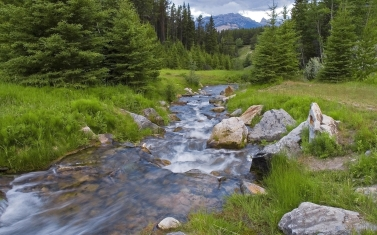 wood_river_stream_mountains_greens_5517_1920x1200