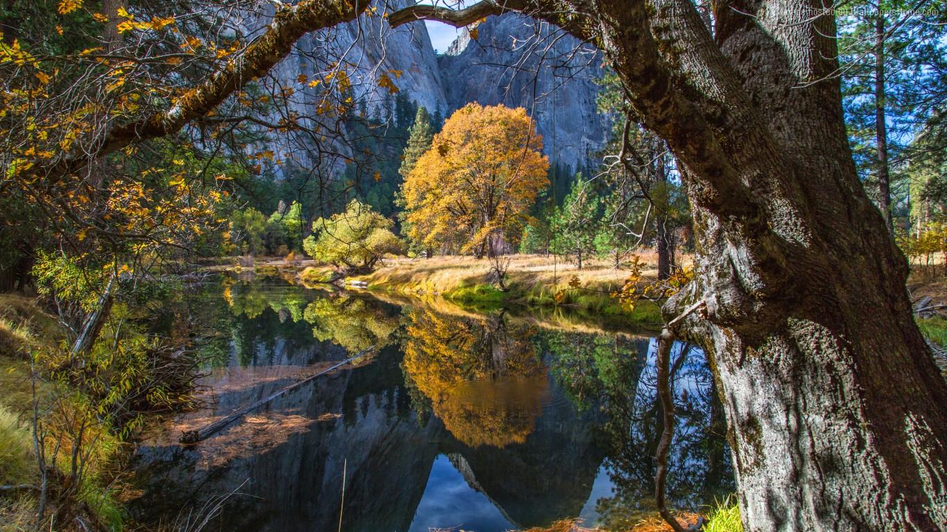 Yosemite 1366 768 5k 4k Wallpaper 8k Forest Osx Apple
