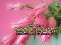 proverbs3-5,6