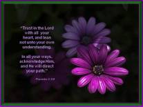 Trust in the Lord Proverbs 3 5_6 wallpaper