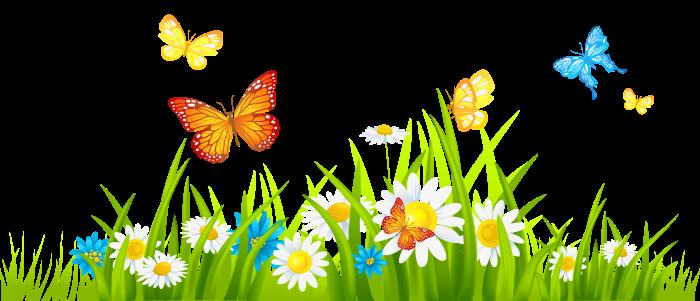 butterflies-clipart-border-7
