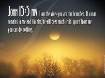 Desktop-Bible-Verse-Wallpaper-John-15-5