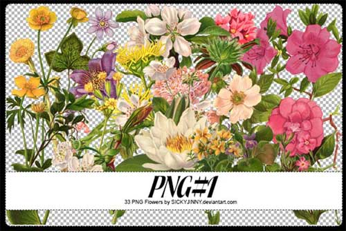 flower-png-8