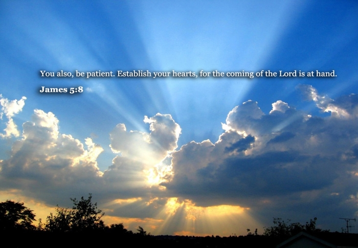 James-5-verse-8