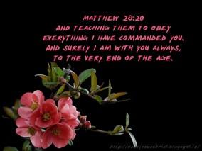 matthew28-20