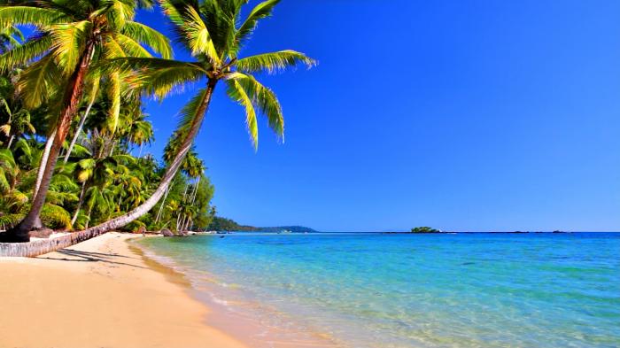 new-beach