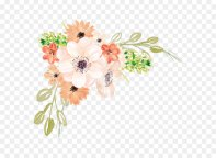 watercolor-flowers-5a293c59457918.4622663215126518652846