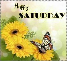 276817-Happy-Saturday-Butterfly-Quote
