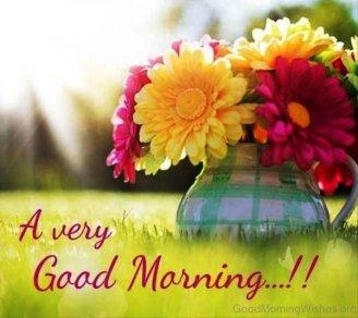 A-Very-Good-Morning-Flower-600x535