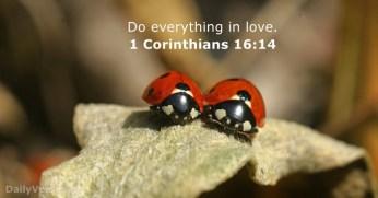 1-corinthians-16-14-2
