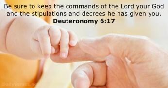 deuteronomy-6-17