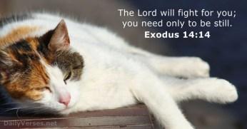 exodus-14-14