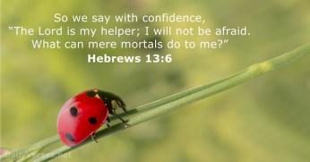 hebrews-13-6