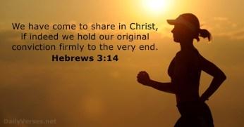 hebrews-3-14