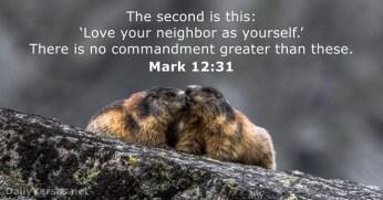 mark-12-31-2