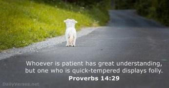 proverbs-14-29
