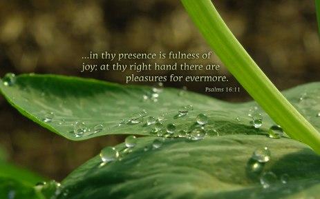 psalms-16.11 (1)