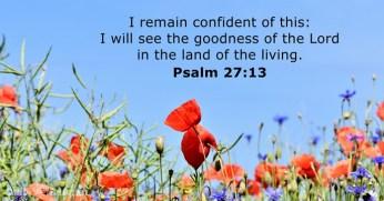 psalms-27-13